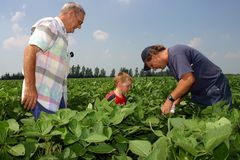 Family Farming Royalty Free Stock Image