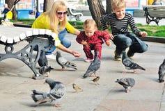 Family feeding doves Stock Photography