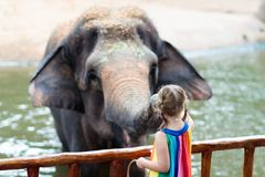 Kids feed elephant in zoo. Family at animal park. Family feeding elephant in zoo. Children feed Asian elephants in tropical safari park during summer vacation royalty free stock photo