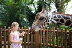 Family feeding giraffe in zoo. Children feed giraffes in tropical safari park during summer vacation. Kids watch animals. Little stock image