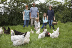 Family Feeding Hens On Grassland Royalty Free Stock Image