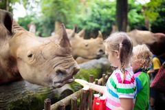 Kids feed rhino in zoo. Family at animal park. Family feeding rhino in zoo. Children feed rhinoceros in tropical safari park on summer vacation in Singapore royalty free stock photography