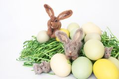 Family of Felted Rabbits in Colored Eggs on Whte Background royalty free stock image