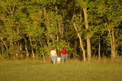 Family in the field. A young family takes a walk in the country holding hands Royalty Free Stock Photos