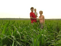 Family in field Stock Images