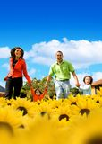 Family in a field of sunflowers Royalty Free Stock Images