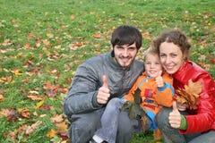 family finger ok Стоковое фото RF