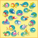 Family of fish. With background - vector and cartoon characters Royalty Free Stock Photo