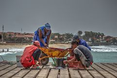 Family fish Santa Maria - Sal Island - Cape Verde. The family earns a living fishing on the pier at the town of Santa Maria - the fish are carefully filleted on Stock Photo