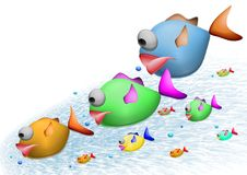Family of fish. On a white Royalty Free Stock Photography