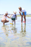 Family fishing crabs on the beach Stock Image
