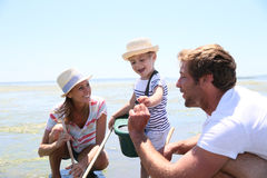 Family fishing crabs and seashells on the beach Stock Photography