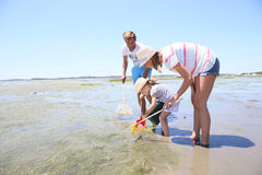 Family fishing crabs on the seaside Royalty Free Stock Photo