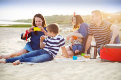 Family of five doing selfy at the picnic on the beach Royalty Free Stock Photo
