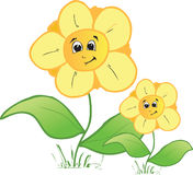 Family flowers. Illustration of two family flowers Royalty Free Stock Photography