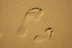 Family Footprints Royalty Free Stock Image