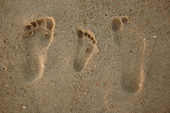 Family footprints in the sand on the beach Royalty Free Stock Photo