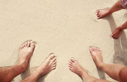 Family footprints in the sand on the seashore Royalty Free Stock Images