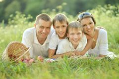 Family of four is having picnic Stock Photos