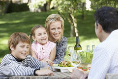 Family Of Four Having Picnic In Park Stock Image