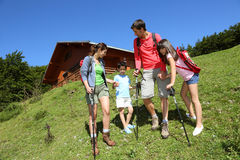 Family of four hiking in natural landscape Royalty Free Stock Photography