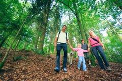 Family Of Four Hiking stock photo
