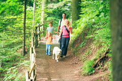 Family Of Four Hiking Royalty Free Stock Images