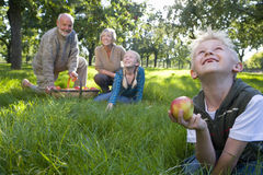 Family of four in orchard with basket of apples, close-up of boy (9-11) with apple, looking up Stock Photography