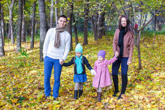 Family of four walk in autumn park on a sunny warm Stock Images
