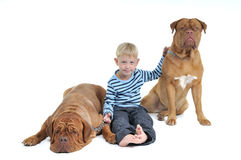 Family Friends Royalty Free Stock Photography