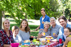 Family and friends having a picnic with barbecue Stock Photography
