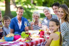 Family and friends having a picnic Royalty Free Stock Photo