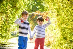 Family fun during harvest time on a farm. Kids playing in autumn. Adorable little two baby boys picking fresh ripe apples in fruit orchard. Family fun during royalty free stock photo