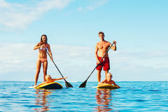 Family Fun, Stand Up Paddling Stock Images
