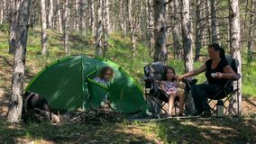 Family fun in the woods with a tent. stock footage