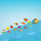 Family of funny fish under the sea Royalty Free Stock Image