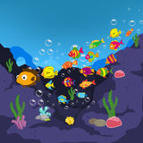 Family of funny fish under the sea Royalty Free Stock Images