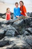 Family at Galapagos Stock Photo