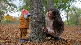 Family games, young woman and little baby boy playing hide and seek beside tree in autumn park. Family games, young woman and little baby boy playing hide and stock video footage