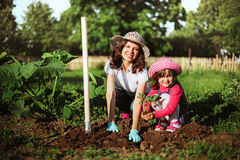 Family in garden. Royalty Free Stock Photos