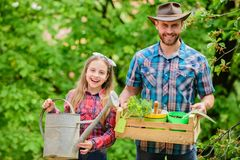 Family garden. Maintain garden. Planting flowers. Family dad and daughter planting plants. Transplanting vegetables from stock images