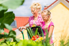 Family at gardening  in front of their home Stock Photography