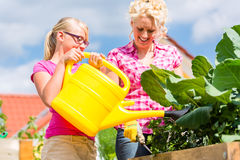 Family gardening in front of their home Stock Photography