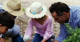 Family gardening together. In park stock footage