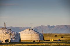 Family gers in a landscape of norther Mongolia. Mongolian family gers in a landscape of northern Mongolia Stock Image