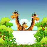 Family of giraffe cartoon with  blank sign and forest background. Illustration of family of giraffe cartoon with  blank sign and forest background Stock Photography