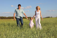 Family going across the field Royalty Free Stock Image