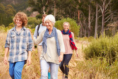 Family with grandmother walking through a forest together stock photo