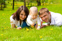 Family on grass. Young family on green grass Stock Image