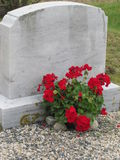 Family gravestone. Red Geraniums mark the lot for the family headstone and cemetery plot Royalty Free Stock Photos
